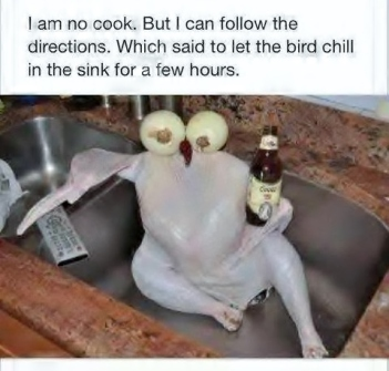 Chicken Chilling in Sink - FB