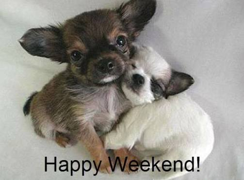 We Made It! Happy Weekend, Puppies Image - From FB Petango