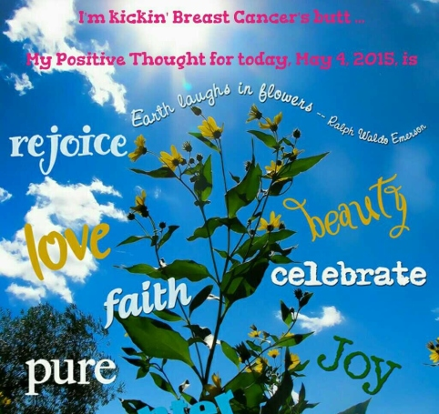 PicCollage Breast Cancer Support May 4, 2015